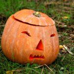 cringing halloween pumpkin